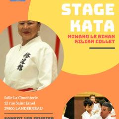 Samedi 1ier Février : Stage KATA à Landerneau