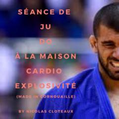 Visio Judo en direct et Masterclass