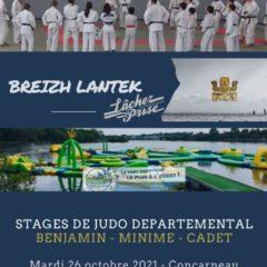 Stage départemental Benjamin(2011-10), Minime(2008-09), Cadet (2007-06-05)