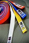 Passage de Grades intermediaires pour l'ecole de judo de Quimper