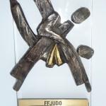 Coupe d'été à ergue gaberic pour les 2002 à 2011